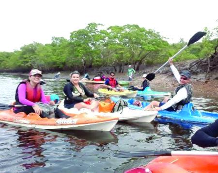 Uma visita ecológica ao peixe-boi-marinho no litoral do Piauí