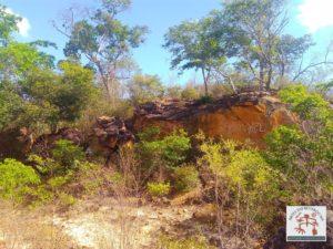 Afloramento rochoso à margem da rodovia PI - Piracuruca  Sete Cidades