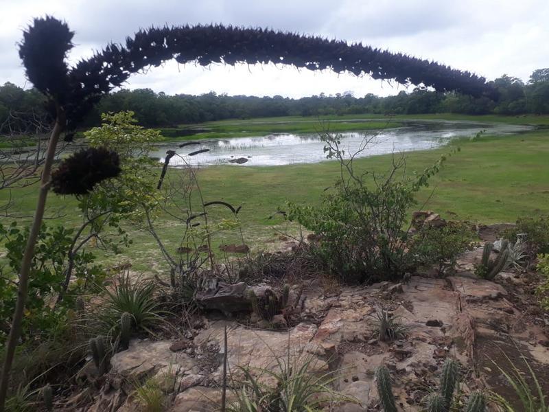 Lagoa das Pedras: Um lugar que poucos castelenses conhecem