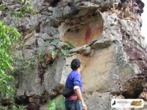 Painel com a pintura rupestre do quelônio