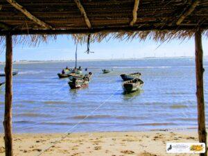 Chegada dos barcos de pesca na Pedra do Sal - Parnaíba-PI, 5 de agosto de 2020