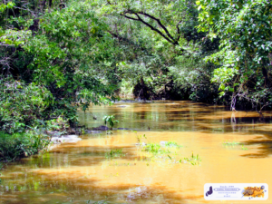 Riacho da Sussuarana, São José do Divino-PI