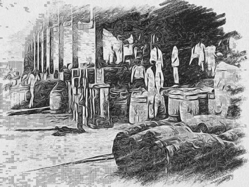 O Laborioso e Pitoresco Porto Salgado da Parnaíba – Piauí