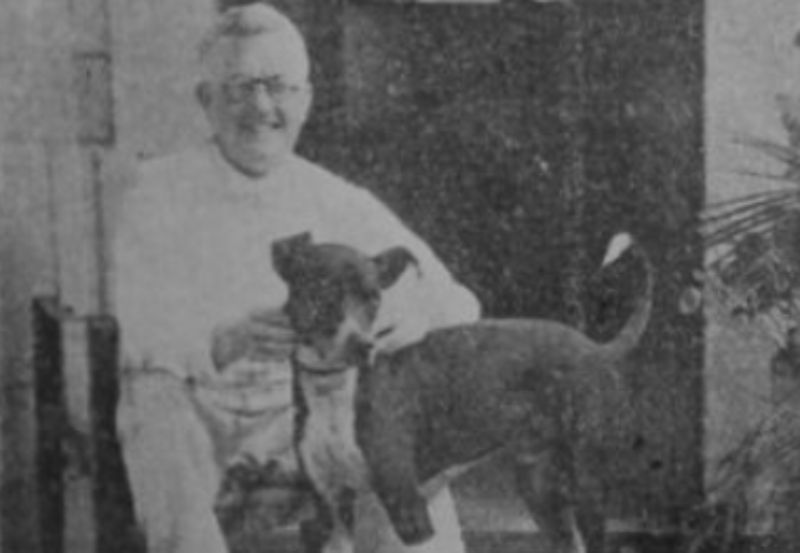 O cachorro Skel da Parnaíba